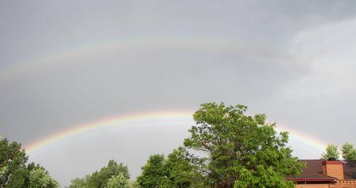 Rainbow 003 CRP