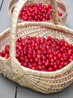 Cherries005