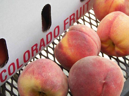 Lavendar Peach Ice Cream 034 CRP
