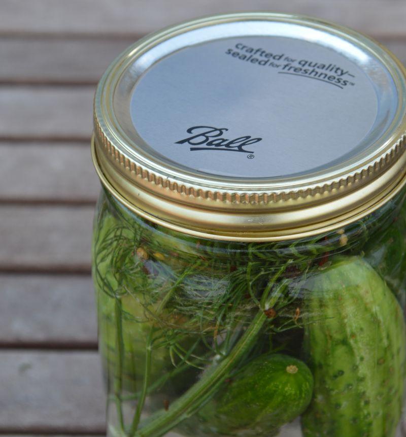 Pickels 082215